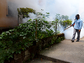 Más de 500 personas beneficiadas con la eliminación de mosquitos y disminución de roedores