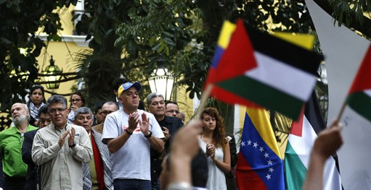 Acto de Palestina en la Plaza Bolivar (18)