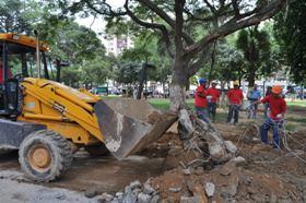 Rehabilitación de La Plaza Bolívar de El Valle