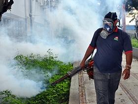 Más de 350 familias fueron beneficiadas con este operativo de fumigación