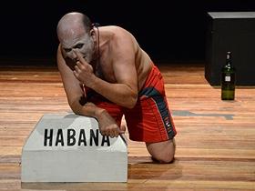 La interpretación de Josefina estuvo a cargo del actor Osvaldo Doimeadiós.
