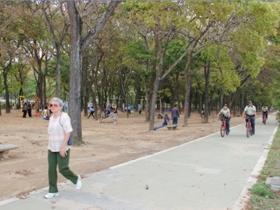 El paseo de la Nacionalidad, es declarado monumento histórico nacional